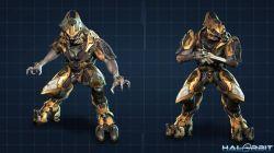 elitewarrior